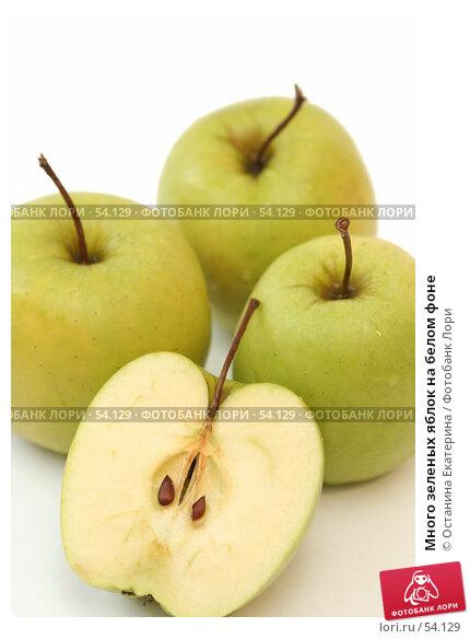 Купить «Много зеленых яблок на белом фоне», фото № 54129, снято 11 июня 2007 г. (c) Останина Екатерина / Фотобанк Лори