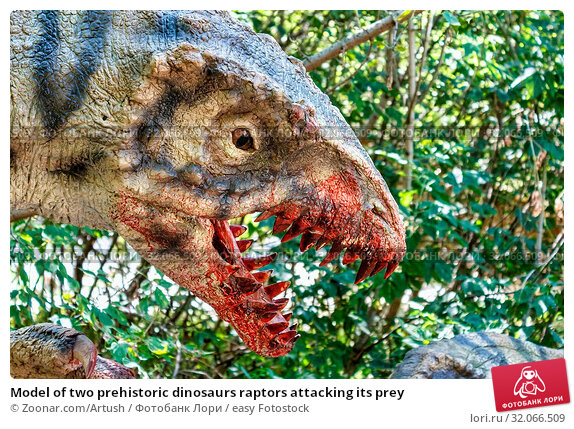 Model of two prehistoric dinosaurs raptors attacking its prey. Стоковое фото, фотограф Zoonar.com/Artush / easy Fotostock / Фотобанк Лори