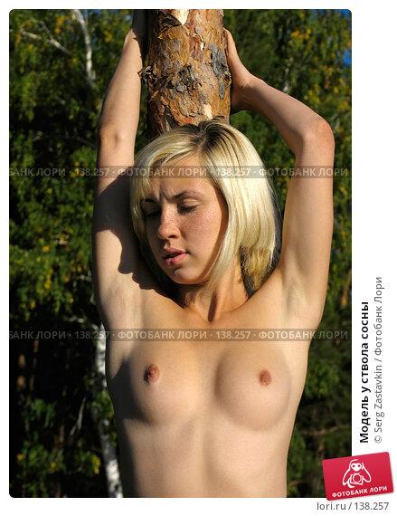Модель у ствола сосны, фото № 138257, снято 18 сентября 2005 г. (c) Serg Zastavkin / Фотобанк Лори