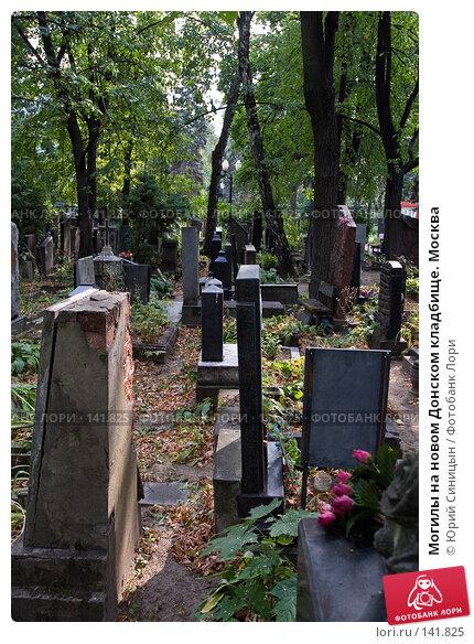 Купить «Могилы на новом Донском кладбище. Москва», фото № 141825, снято 5 сентября 2007 г. (c) Юрий Синицын / Фотобанк Лори