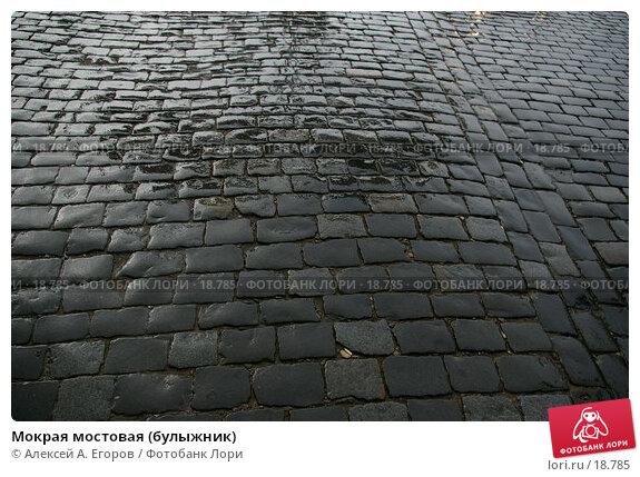 Купить «Мокрая мостовая (булыжник)», фото № 18785, снято 27 июля 2006 г. (c) Алексей А. Егоров / Фотобанк Лори