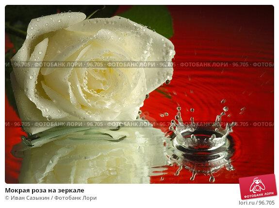 Купить «Мокрая роза на зеркале», фото № 96705, снято 5 декабря 2003 г. (c) Иван Сазыкин / Фотобанк Лори