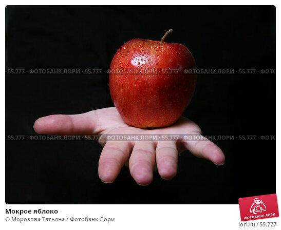 Мокрое яблоко, фото № 55777, снято 15 июня 2007 г. (c) Морозова Татьяна / Фотобанк Лори