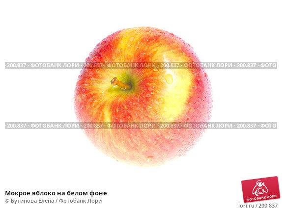 Мокрое яблоко на белом фоне, фото № 200837, снято 13 февраля 2008 г. (c) Бутинова Елена / Фотобанк Лори
