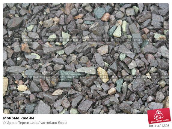 Мокрые камни, эксклюзивное фото № 1393, снято 17 сентября 2005 г. (c) Ирина Терентьева / Фотобанк Лори
