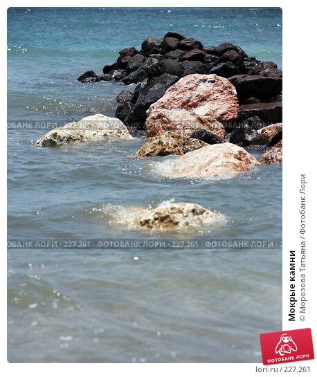 Мокрые камни, фото № 227261, снято 22 октября 2007 г. (c) Морозова Татьяна / Фотобанк Лори