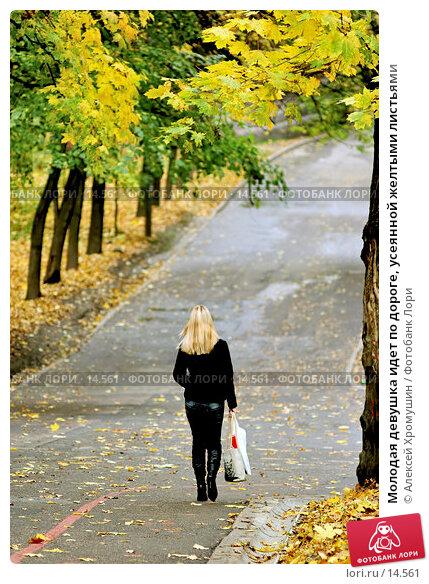 Молодая девушка идет по дороге, усеянной желтыми листьями, фото № 14561, снято 20 октября 2005 г. (c) Алексей Хромушин / Фотобанк Лори