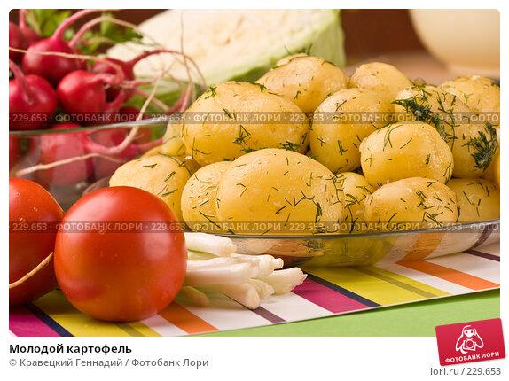 Молодой картофель, фото № 229653, снято 17 июля 2005 г. (c) Кравецкий Геннадий / Фотобанк Лори