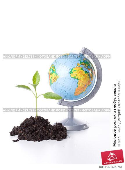 Молодой росток и глобус земли, фото № 323781, снято 28 мая 2008 г. (c) Мельников Дмитрий / Фотобанк Лори