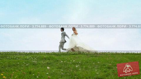 Купить «Молодожены бегут на фоне голубого неба над полем летом», видеоролик № 3774889, снято 29 января 2012 г. (c) Losevsky Pavel / Фотобанк Лори
