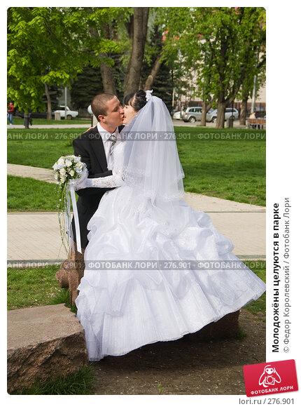 Купить «Молодожёны целуются в парке», фото № 276901, снято 18 апреля 2008 г. (c) Федор Королевский / Фотобанк Лори