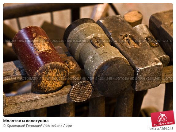 Молоток и колотушка, фото № 264245, снято 8 октября 2005 г. (c) Кравецкий Геннадий / Фотобанк Лори