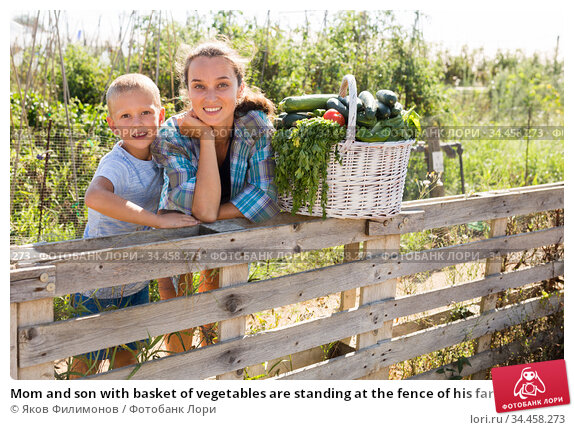 Mom and son with basket of vegetables are standing at the fence of his farm. Стоковое фото, фотограф Яков Филимонов / Фотобанк Лори