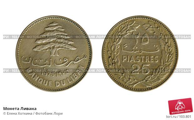 Монета Ливана, фото № 103801, снято 25 мая 2017 г. (c) Елена Хоткина / Фотобанк Лори