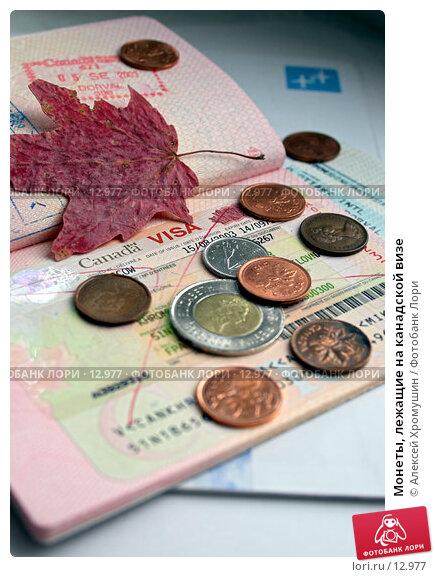 Монеты, лежащие на канадской визе, фото № 12977, снято 29 октября 2006 г. (c) Алексей Хромушин / Фотобанк Лори