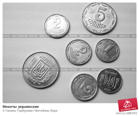 Купить «Монеты  украинские», фото № 208913, снято 16 апреля 2006 г. (c) Галина  Горбунова / Фотобанк Лори
