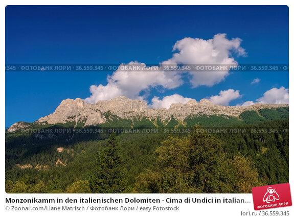 Monzonikamm in den italienischen Dolomiten - Cima di Undici in italian... Стоковое фото, фотограф Zoonar.com/Liane Matrisch / easy Fotostock / Фотобанк Лори