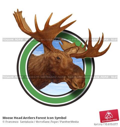Moose Head Antlers Forest Icon Symbol. Стоковое фото, фотограф Francesco  Santalucia / PantherMedia / Фотобанк Лори