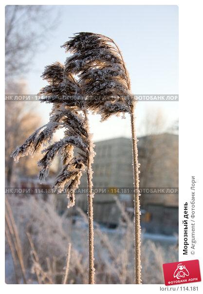 Морозный день, фото № 114181, снято 28 декабря 2004 г. (c) Argument / Фотобанк Лори