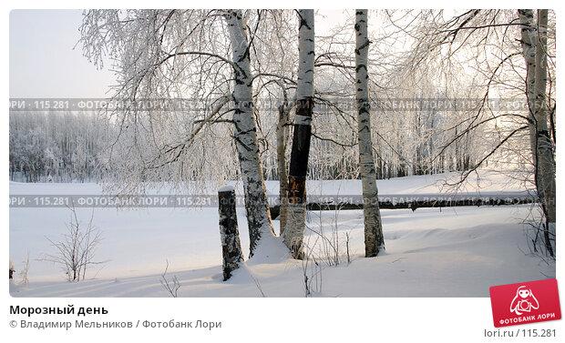 Морозный день, фото № 115281, снято 27 октября 2016 г. (c) Владимир Мельников / Фотобанк Лори