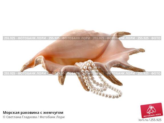 Морская раковина с жемчугом, фото № 255925, снято 12 февраля 2008 г. (c) Cветлана Гладкова / Фотобанк Лори