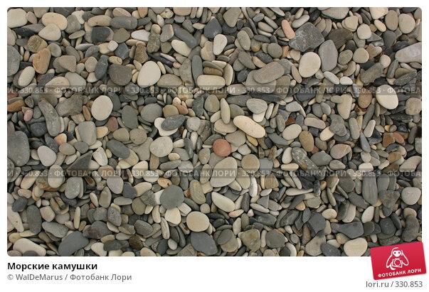 Морские камушки, фото № 330853, снято 12 июня 2008 г. (c) WalDeMarus / Фотобанк Лори