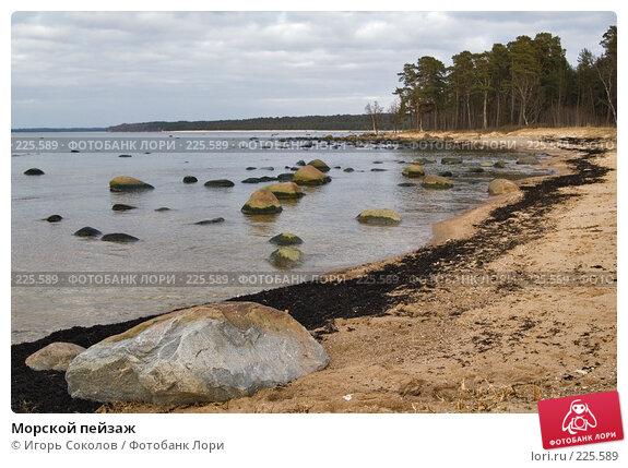Морской пейзаж, фото № 225589, снято 11 марта 2008 г. (c) Игорь Соколов / Фотобанк Лори