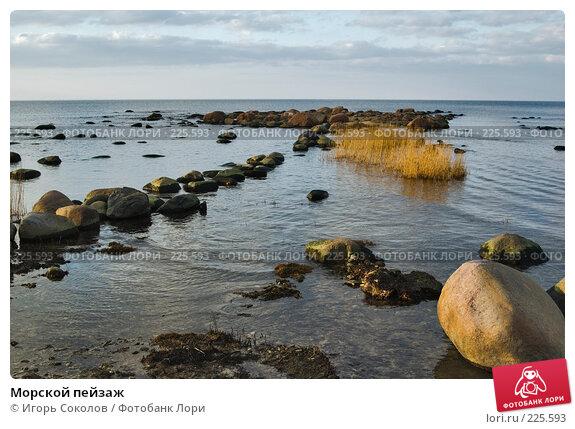 Морской пейзаж, фото № 225593, снято 11 марта 2008 г. (c) Игорь Соколов / Фотобанк Лори