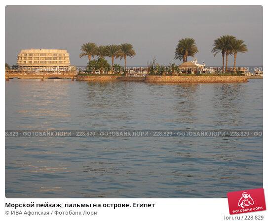 Морской пейзаж, пальмы на острове. Египет, фото № 228829, снято 2 января 2008 г. (c) ИВА Афонская / Фотобанк Лори
