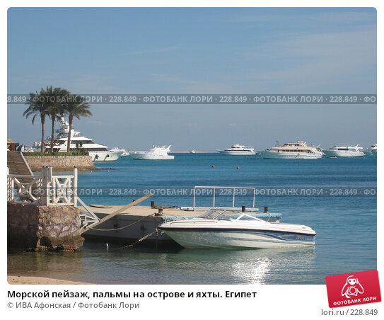 Морской пейзаж, пальмы на острове и яхты. Египет, фото № 228849, снято 8 января 2008 г. (c) ИВА Афонская / Фотобанк Лори