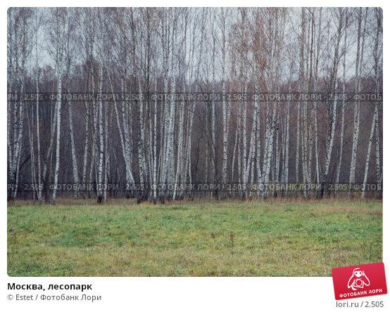 Москва, лесопарк, фото № 2505, снято 28 июля 2017 г. (c) Estet / Фотобанк Лори