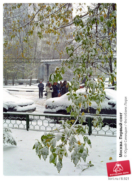 Купить «Москва. Первый снег», фото № 8921, снято 20 мая 2018 г. (c) Юрий Синицын / Фотобанк Лори
