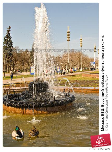 Купить «Москва. ВВЦ. Весенний пейзаж с фонтаном и утками.», фото № 256409, снято 10 апреля 2008 г. (c) Светлана Силецкая / Фотобанк Лори