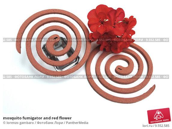 mosquito fumigator and red flower. Стоковое фото, фотограф lorenzo gambaro / PantherMedia / Фотобанк Лори