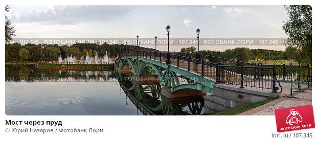 Купить «Мост через пруд», фото № 107345, снято 17 декабря 2017 г. (c) Юрий Назаров / Фотобанк Лори