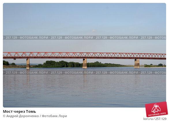 Мост через Томь, фото № 257129, снято 26 июля 2017 г. (c) Андрей Доронченко / Фотобанк Лори