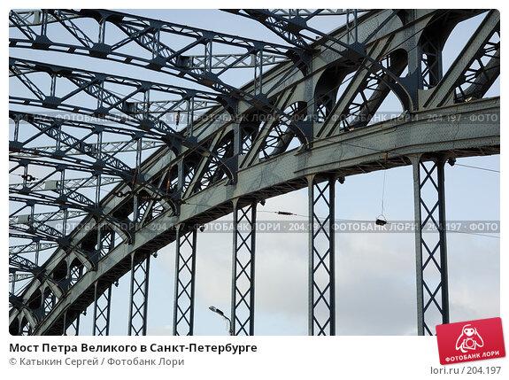 Мост Петра Великого в Санкт-Петербурге, фото № 204197, снято 16 февраля 2008 г. (c) Катыкин Сергей / Фотобанк Лори