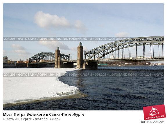 Мост Петра Великого в Санкт-Петербурге, фото № 204205, снято 16 февраля 2008 г. (c) Катыкин Сергей / Фотобанк Лори
