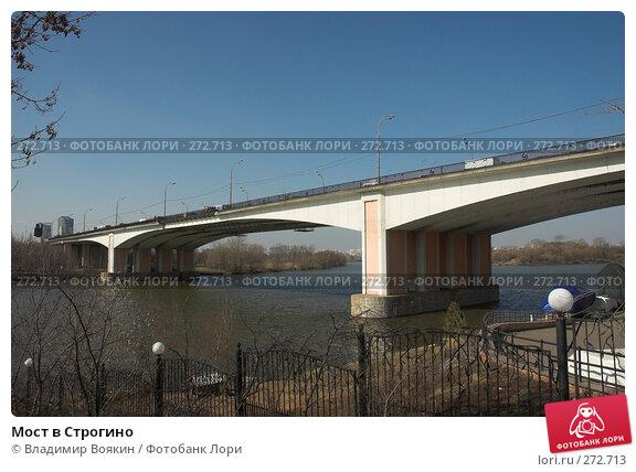 Мост в Строгино, фото № 272713, снято 26 марта 2007 г. (c) Владимир Воякин / Фотобанк Лори