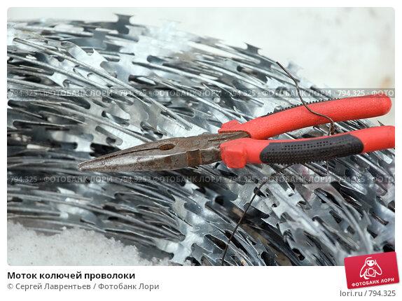 Купить «Моток колючей проволоки», фото № 794325, снято 29 марта 2009 г. (c) Сергей Лаврентьев / Фотобанк Лори