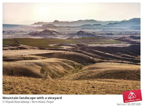 Купить «Mountain landscape with a vineyard», фото № 32257025, снято 19 августа 2018 г. (c) Юрий Бизгаймер / Фотобанк Лори