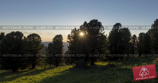 Mountain meadow timelapse. Wild nature and rural field. Clouds, trees, green grass and sun rays movement. Camera motion. Стоковое видео, видеограф Александр Маркин / Фотобанк Лори