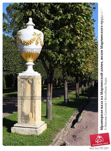 Мраморная ваза на Марлинской аллее, возле Марлинского пруда в Петергофе. Санкт-Петербург, фото № 97201, снято 5 сентября 2007 г. (c) Максим Соколов / Фотобанк Лори