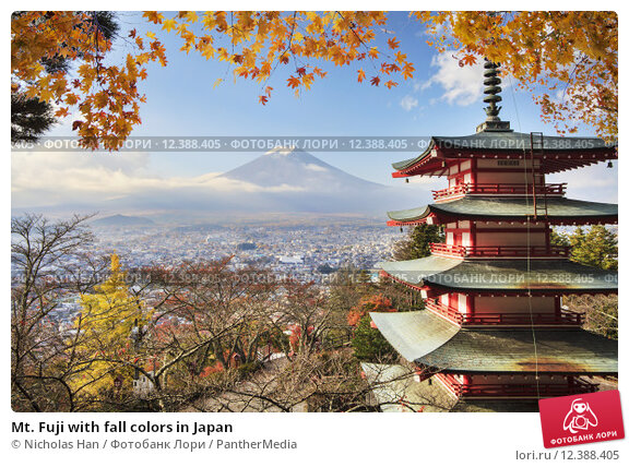 Купить «Mt. Fuji with fall colors in Japan», фото № 12388405, снято 21 августа 2018 г. (c) PantherMedia / Фотобанк Лори