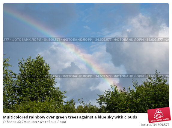 Multicolored rainbow over green trees against a blue sky with clouds. Стоковое фото, фотограф Валерий Смирнов / Фотобанк Лори