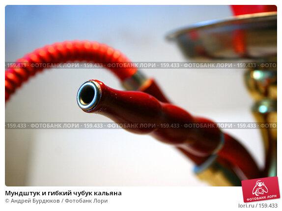 Купить «Мундштук и гибкий чубук кальяна», фото № 159433, снято 17 декабря 2007 г. (c) Андрей Бурдюков / Фотобанк Лори