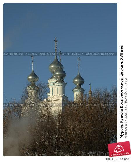 Муром. Купола Воскресенской церкви. XVII век, фото № 163037, снято 23 декабря 2007 г. (c) Яков Филимонов / Фотобанк Лори