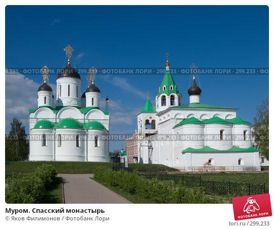 Муром. Спасский монастырь, фото № 299233, снято 2 мая 2008 г. (c) Яков Филимонов / Фотобанк Лори