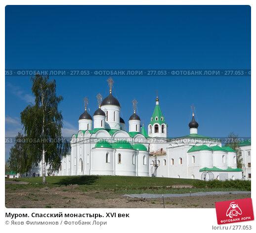 Муром. Спасский монастырь. XVI век, фото № 277053, снято 2 мая 2008 г. (c) Яков Филимонов / Фотобанк Лори