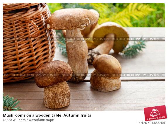 Купить «Mushrooms on a wooden table. Autumn fruits», фото № 21835401, снято 20 ноября 2017 г. (c) Joanna Malesa / Фотобанк Лори